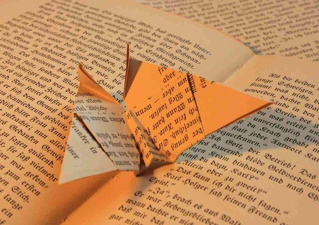 origami libro